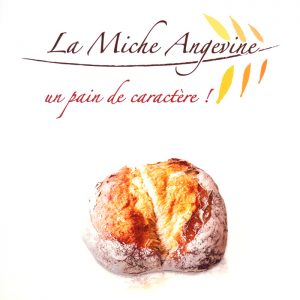 Miche Angevine